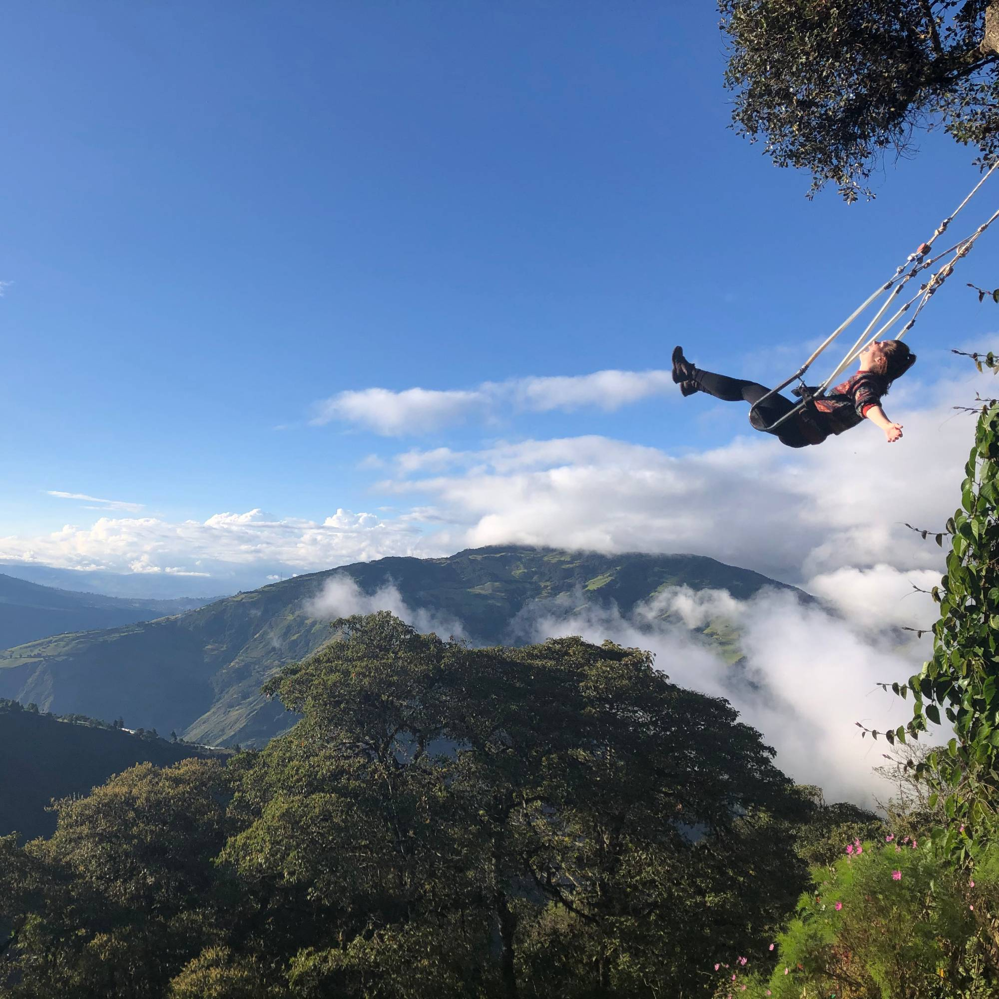 mountainous landscape with person on swing